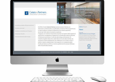 web design / calato & partners / 2014