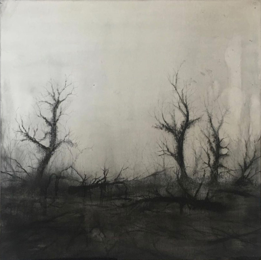 AU#185-2019, 25x25cm, charcoal and gesso on panel (private collection)