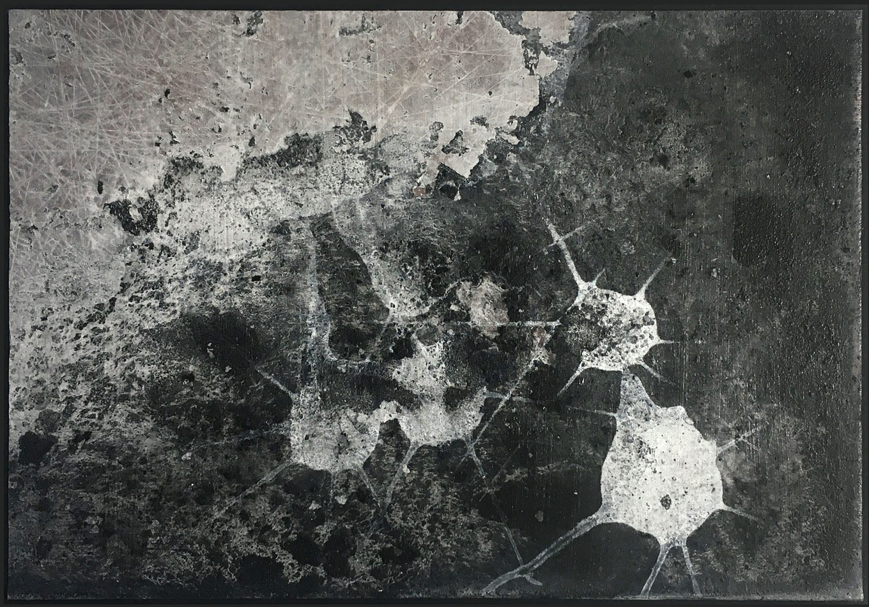AU#186-2020 (detail)