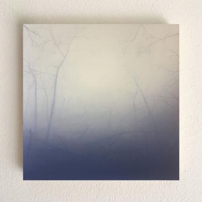 AU#192-2020, 38x38cm, charcoal, gesso, oil on panel